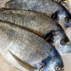Whole Bream